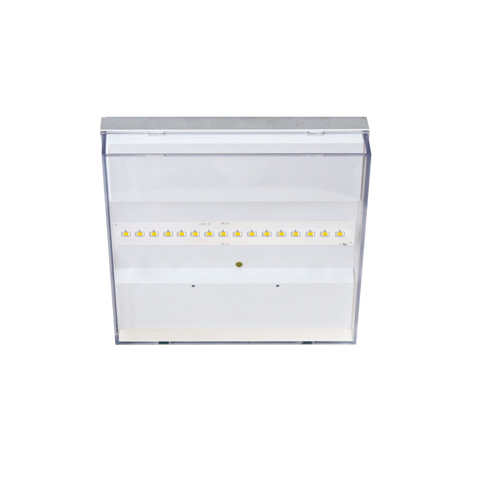 ERGO-iluminacion-1