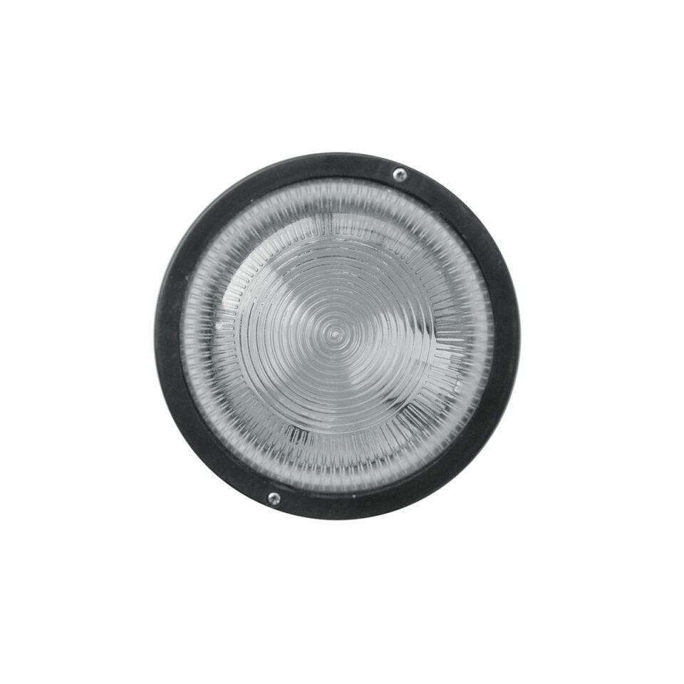 tortuga-iluminacion-1
