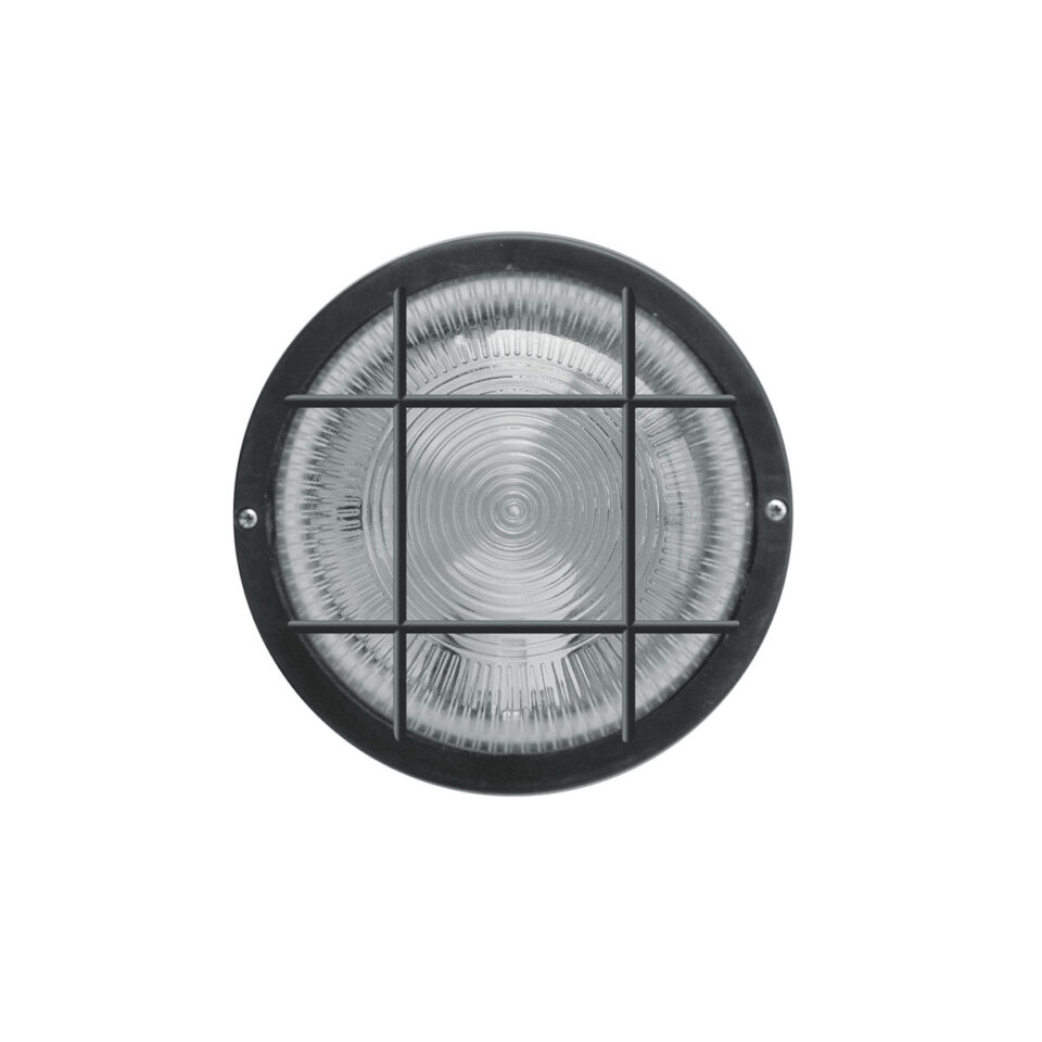 tortuga-iluminacion-2