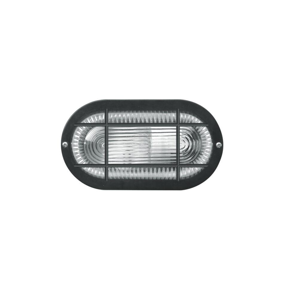 tortuga-iluminacion-4